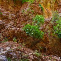 Ущелье Арадена