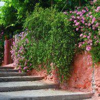 Ханья, улочки старого города