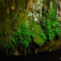 Экскурсия в пещеру Зевса, плато Лассити, Крит