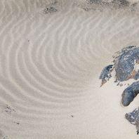 Песок на пляже Кедродасос, Крит