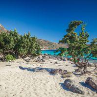Можжевельники на пляже Кедродасос, Крит