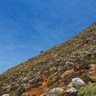 По дороге к Ливаньяне и ущелью Арадена