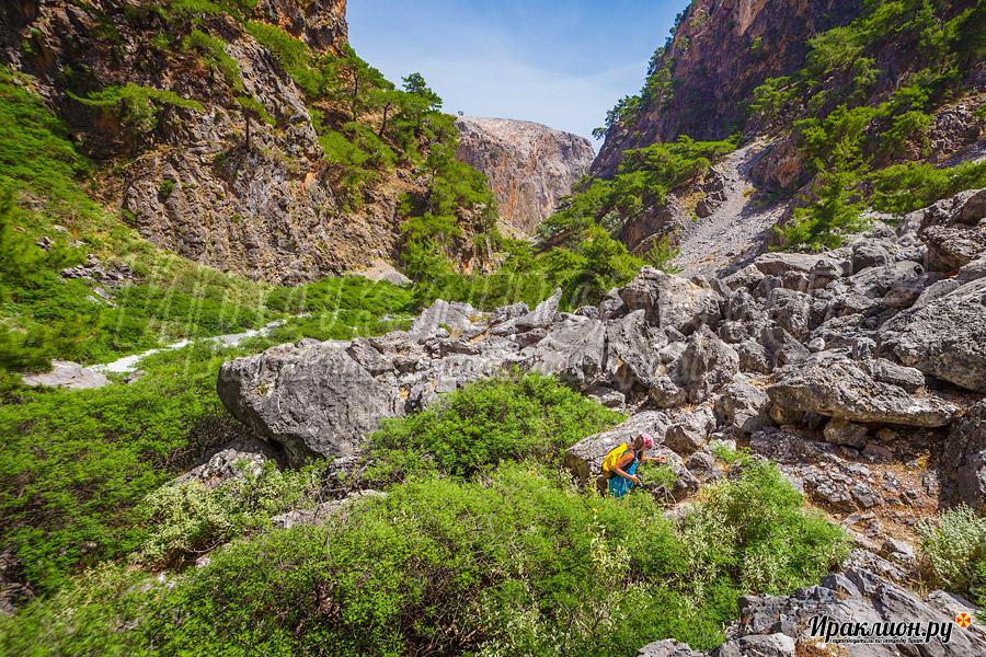 Прохождение ущелья Арадена вместе с Путеводителем по Криту Ираклион Ру