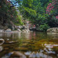 Река Курталиоти
